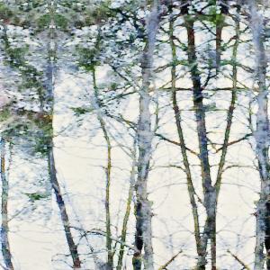 LIEBMAN-Francoise-Sullivan-Simma-Liebman-Frottis-Paraffine-43-Trees