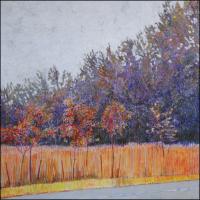 County Trees - Muddy Creek
