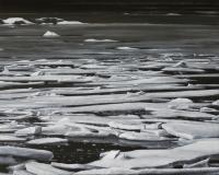 Lisa Lebofsky - Frozen Lagoon