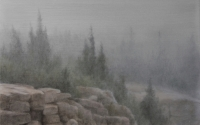 Lisa Lebofsky - Cadillac Mountain Fog
