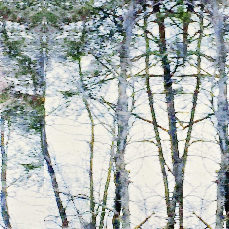 Simma-Liebman-Frottis-Paraffine-43-Trees